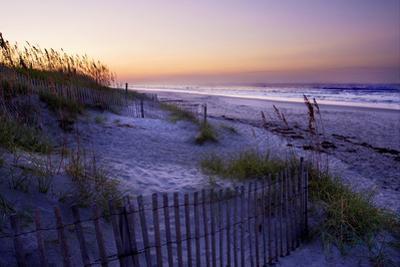 Lavender Beach II by Alan Hausenflock