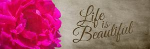 Life is Beautiful by Alan Hausenflock