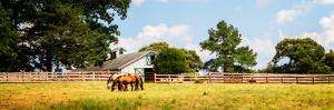 Louisa County II by Alan Hausenflock