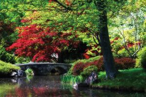 Meisho Garden I by Alan Hausenflock