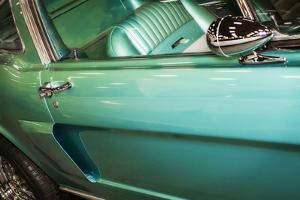 Mighty Mustang II by Alan Hausenflock