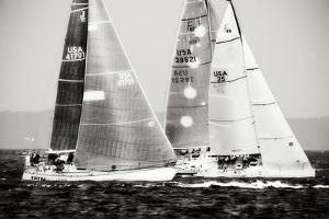 Race on the Chesapeake III by Alan Hausenflock