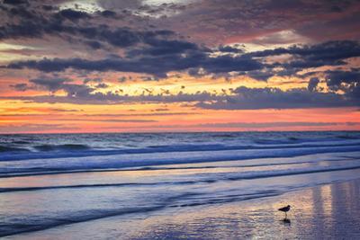 Ragged Sunrise I by Alan Hausenflock