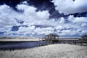 River in the Marsh II by Alan Hausenflock