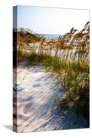 Sea Oats & Shadow II