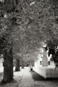 Small Town Autumn III by Alan Hausenflock