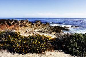 Spanish Bay 2 by Alan Hausenflock