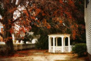 Summer's Ending I by Alan Hausenflock