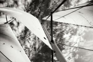 The Woodwind II by Alan Hausenflock