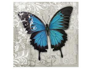 Blue Butterfly II by Alan Hopfensperger