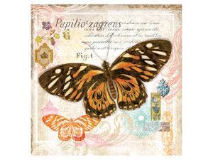 Butterfly Artifact Pink by Alan Hopfensperger