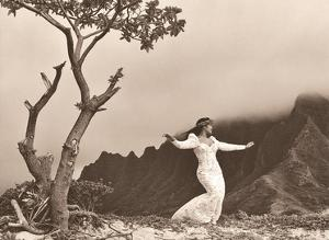 Hula 'auana (Modern Style) Hawaiian Dancer by Alan Houghton