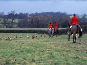 The Quorn Fox Hunt, Leicestershire, England by Alan Klehr