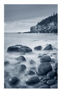 Acadia Coast by Alan Majchrowicz