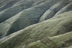 Columbia Plateau Oregon by Alan Majchrowicz