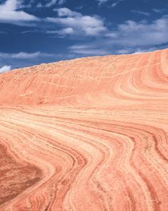 Coyote Buttes V Blush Orange Crop by Alan Majchrowicz