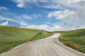 Gravel Road Near Choteau Montana I by Alan Majchrowicz