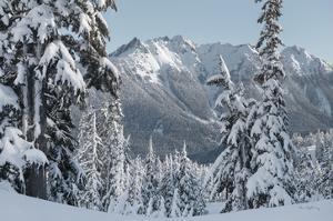 Nooksack Ridge in Winter by Alan Majchrowicz
