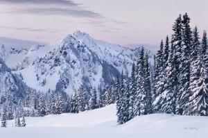 Tatoosh Range by Alan Majchrowicz