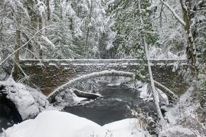 Whatcom Creek Bridge by Alan Majchrowicz