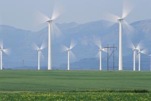Wind Turbines by Alan Sirulnikoff