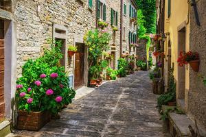 Italian Street in A Small Provincial Town of Tuscan by Alan64