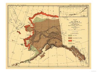 Alaska - Fox Population State Map-Lantern Press-Art Print