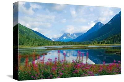 Alaska USA I--Stretched Canvas Print