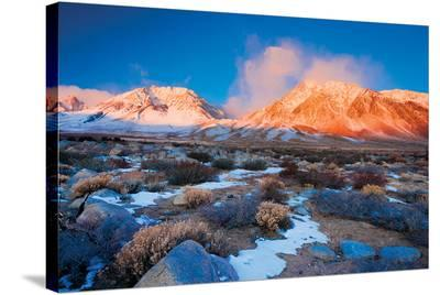 Alaska USA II--Stretched Canvas Print