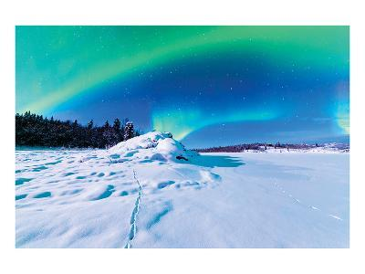 Alaska USA IV--Art Print
