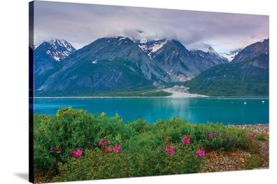 Alaska USA XII--Stretched Canvas Print