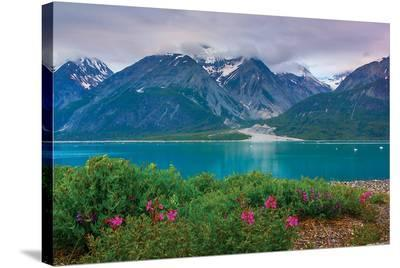 Alaska USA XII--Stretched Canvas Print