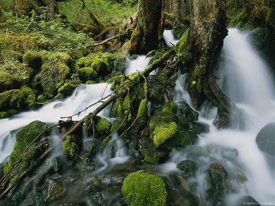 Alaskan Waterfall-Roy Toft-Photographic Print