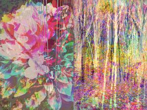 A Floral Montage by Alaya Gadeh