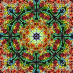 A Mandala from Flowers, Photograph, Many Layer Artwork by Alaya Gadeh