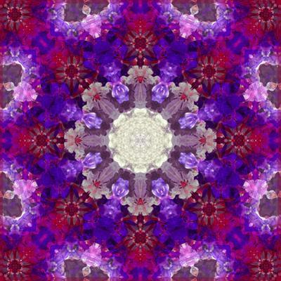 A Many Layered Flower Mandala