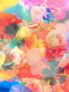 A Montage of Colorful Flowers and Petals by Alaya Gadeh