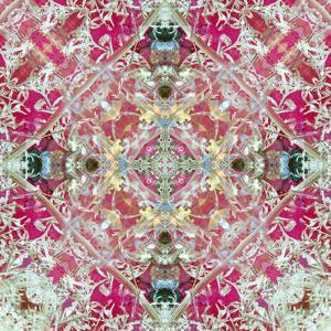 A Symmetric Floral Montage, Photograph, Layer Work by Alaya Gadeh
