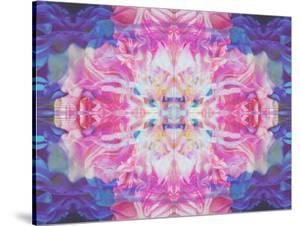 Abstract Multicolor Floral Montage Photographic Layer Work by Alaya Gadeh
