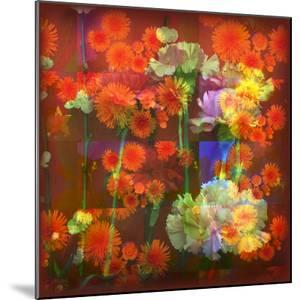 An Abstract Geometric Floral Montage Photographic Layer Work by Alaya Gadeh