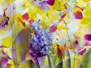 An Abstract Multicolor Floral Montage Photographic Layer Work by Alaya Gadeh