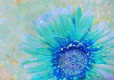 Blue Green Magical Daisy