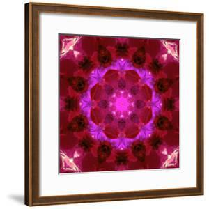 Bright Energetic Mandala Ornament from Flowers by Alaya Gadeh