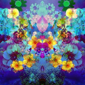 Colorful and Symmetric Photographic Layer Work of Blossoms by Alaya Gadeh