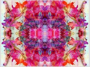 Colorful Symmetric Layer Work from Gladiolus Blossoms by Alaya Gadeh
