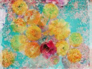 Composing of Blossoms and Slices of Orange, Abstract by Alaya Gadeh