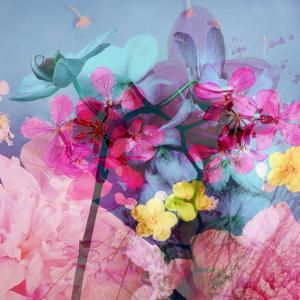 Floral Montage by Alaya Gadeh