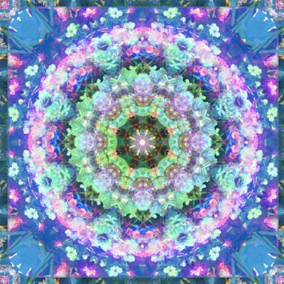 Flower Mandala Aqua Blossom