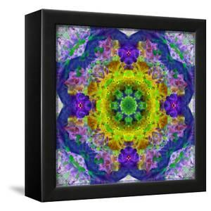 Flower Mandala, Photograph, Layer Work by Alaya Gadeh