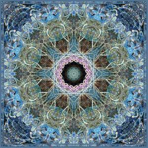 Gentle Blue Frosted Leafes in the Forest Mandala by Alaya Gadeh